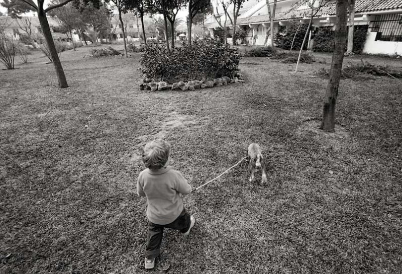 January 15 -  Max (The Dog) Taking S2 For A Walk