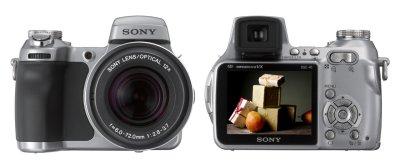 Sony DSC-H1 Samples