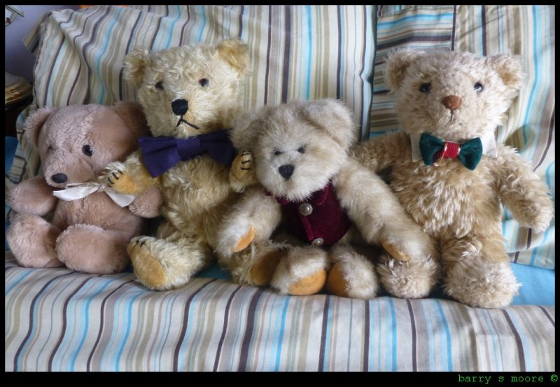 A Hug of Teddy Bears