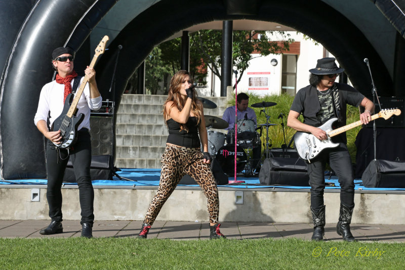 The Monroes Band