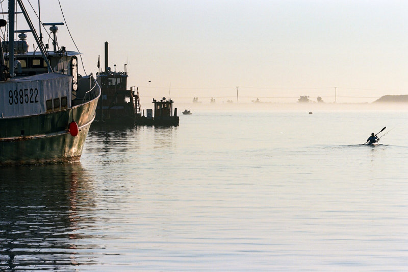 the intrepid fisherman