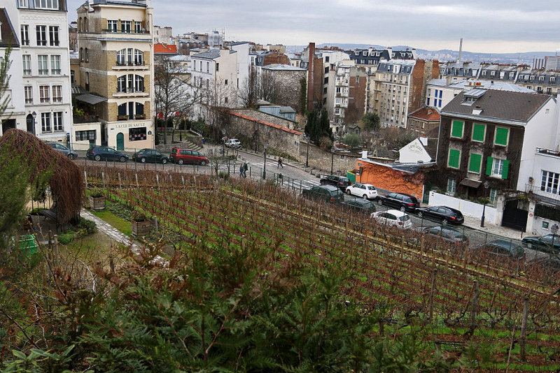 10 Exposition Valladon Utrillo Utter au musee de Montmartre - IMG_2234_DxO Pbase.jpg
