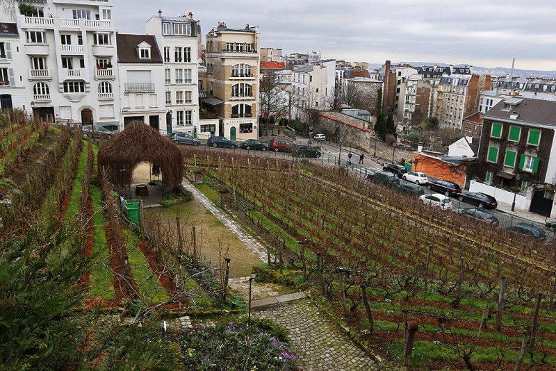 9 Exposition Valladon Utrillo Utter au musee de Montmartre - IMG_2233_DxO Pbase.jpg