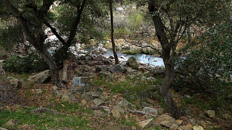 Elfin Forest Jan 20014 - 43.jpg