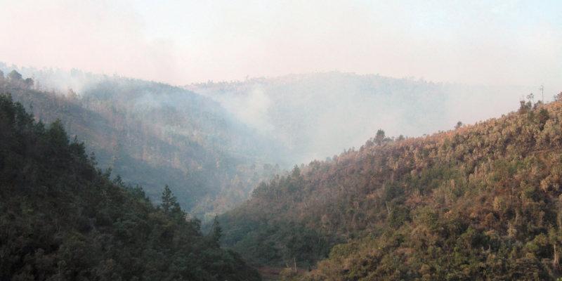 One of many forest fires Fianarantsoa and Ranomafana