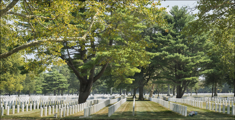 Military Personnel  and Family Graves