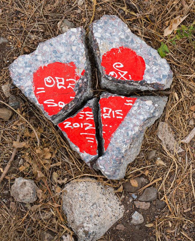 Broken Heart 2013