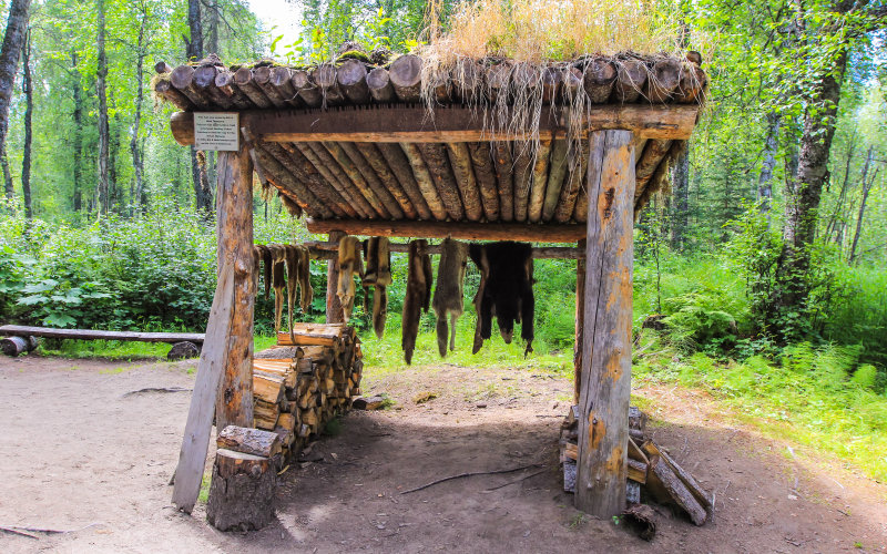 Trapper's pelt drying stand at the trapper's cabin site along the Chulitna River