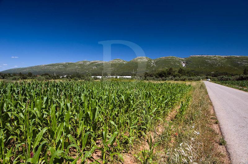 Serra dos Candeeiros - O Termo Este de Aljubarrota