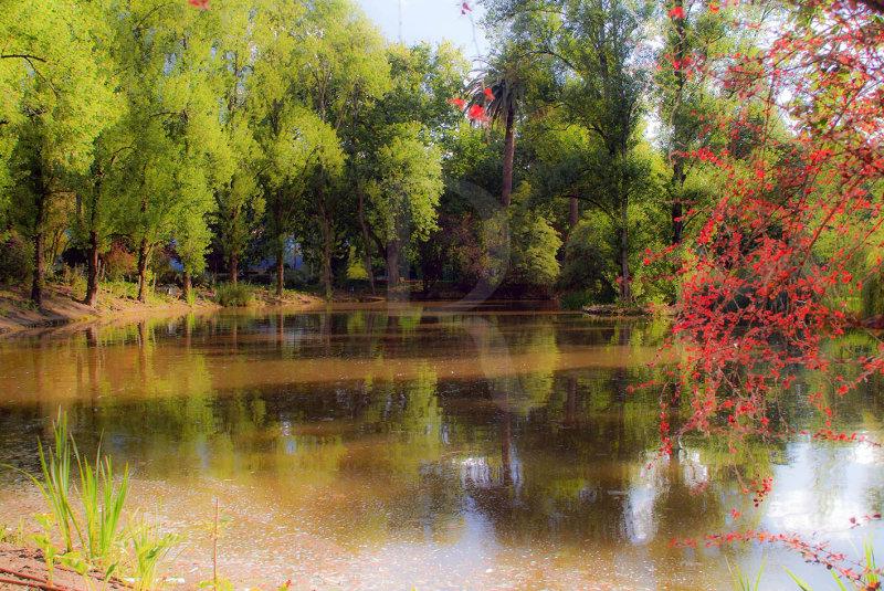 O Parque D. Carlos em 2 de julho de 2007