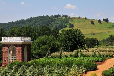 Thomas Jeffersons Garden