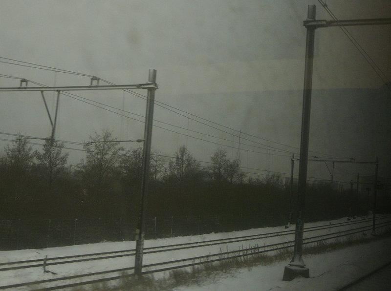 P1220593a.jpg