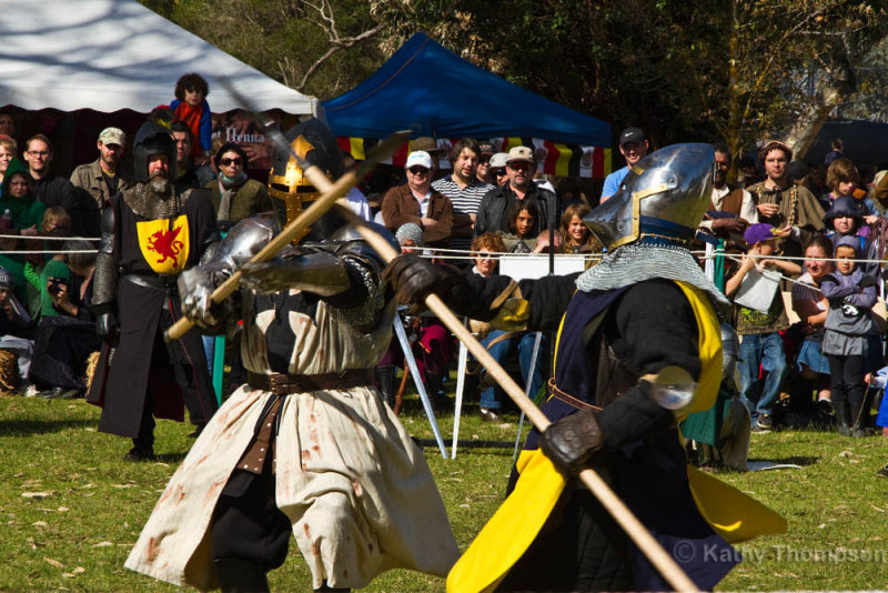 9950_Ironclad Academy of the Sword