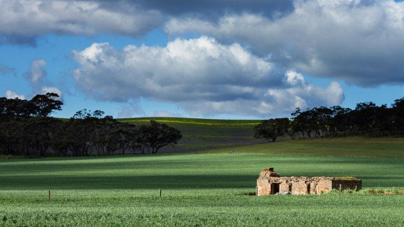 Stone Ruin -  Greenock, Barossa Valley