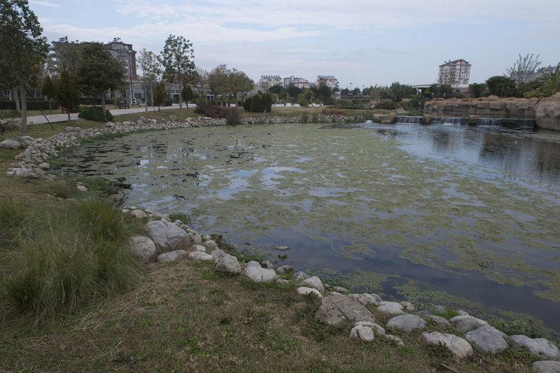 Antalya December 2013 4768.jpg