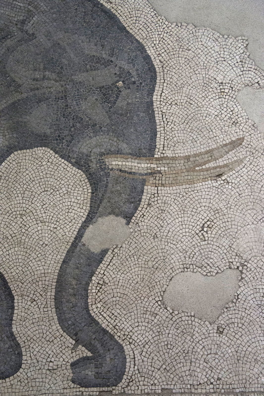 Istanbul Mosaic Museum dec 2016 1594.jpg