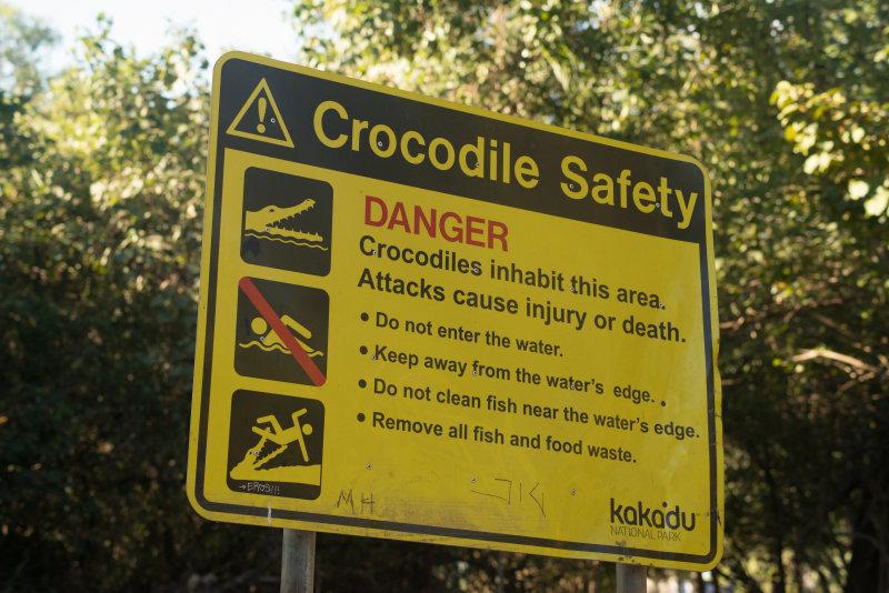 croc-2.jpg