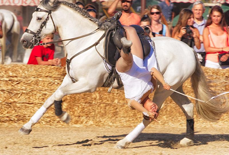 Camargue Horse Maneuvers