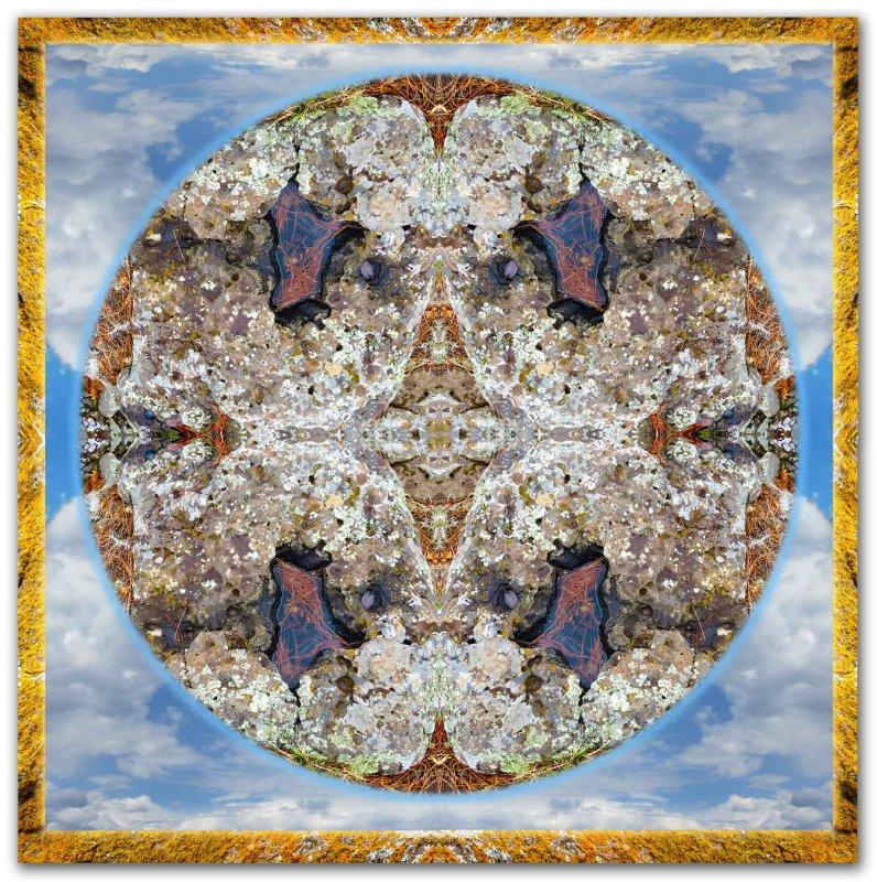 Lichen Pool Mandala