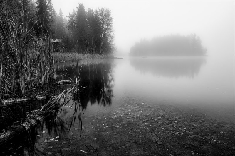 Morning at Gardom Lake
