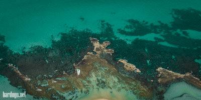 חופי בת ים