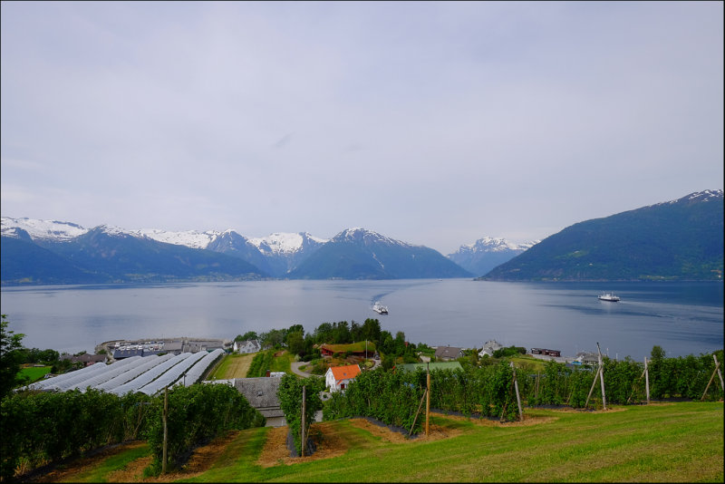 34. View towards Balestrand.......