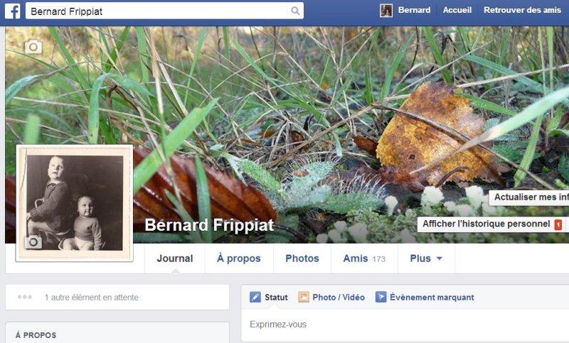 https://www.facebook.com/bernard.frippiat