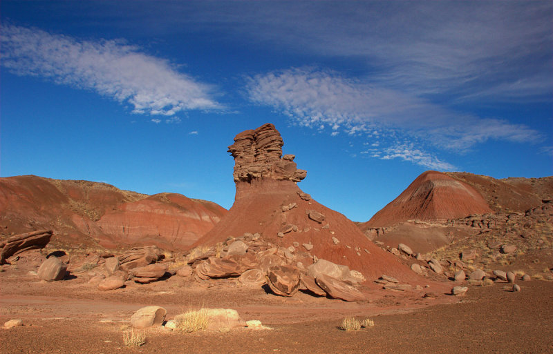Hoodoo at Petrified Forest N.P.