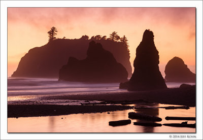 Olympic Peninsula and Whistler Photo Gallery