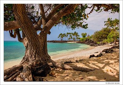 Hawaii - The Big Island - 2015 Image Gallery