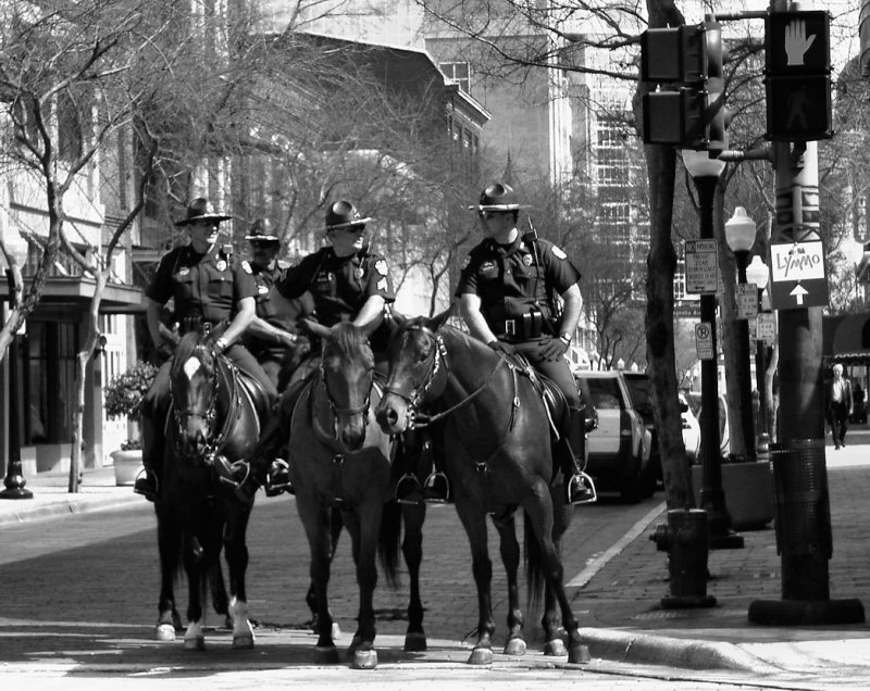 Orlando Mounted Police