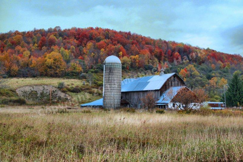 Farm in Upstate New York