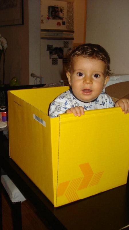 2008 João 8 meses 144.jpg
