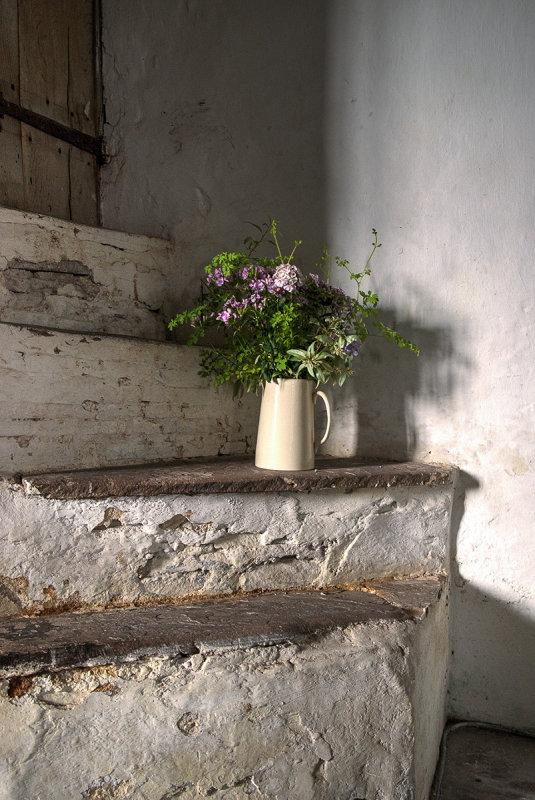 Flowers on steps