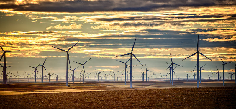 Wind Farm Sunrise