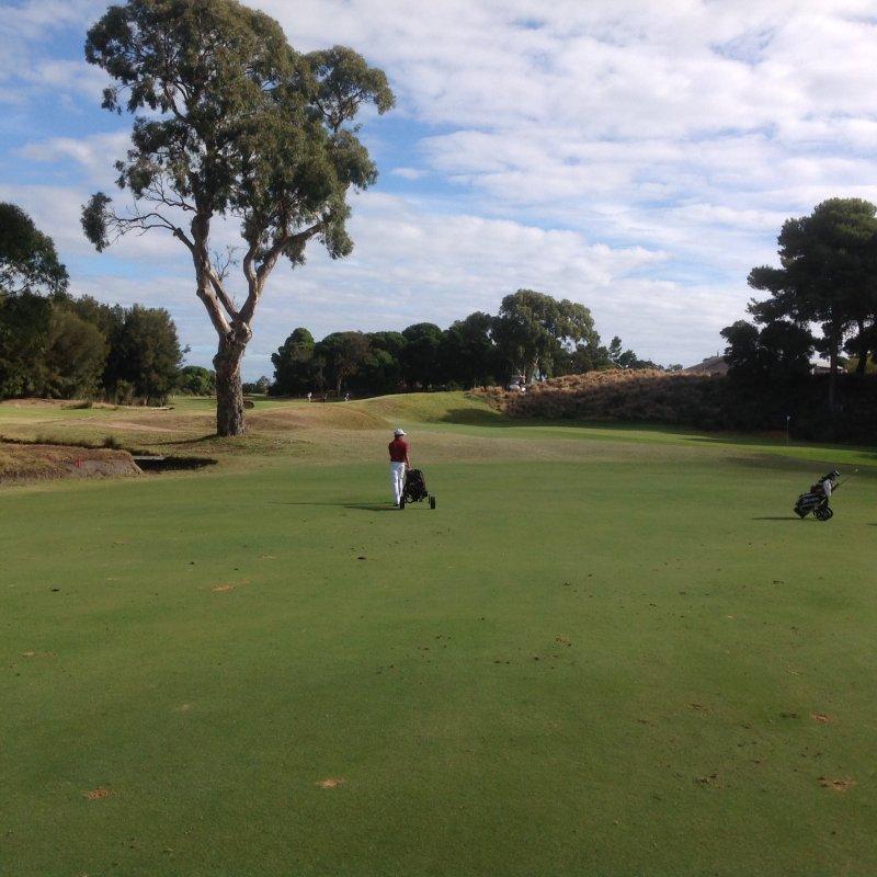 Kooyonga golf club Adelaide South Australia