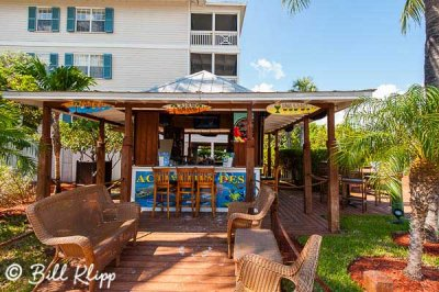 Pool Bar, Hyatt Beach House  1