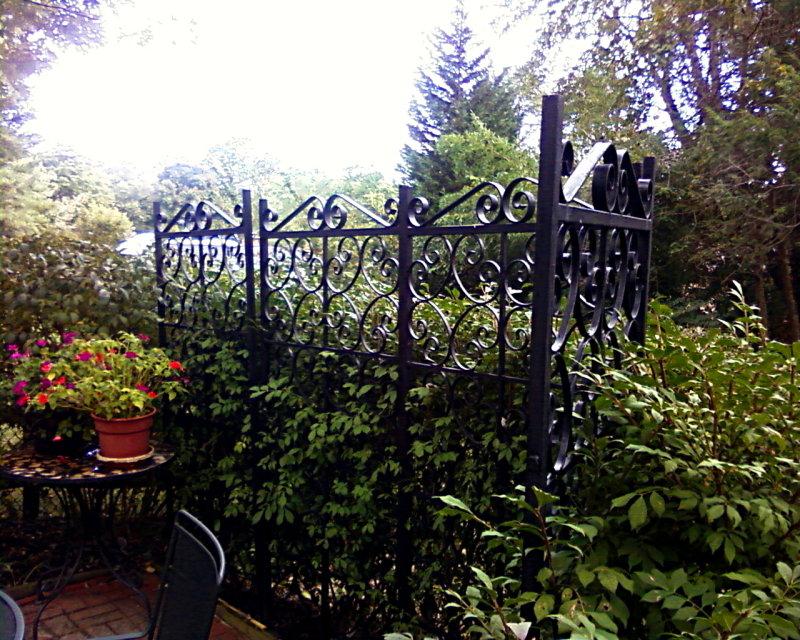 Iron Security Grates recycled as garden trellis