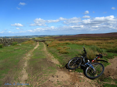 A nice day on the moor