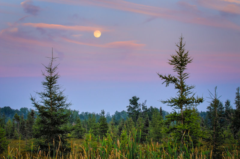 evening before the full moon