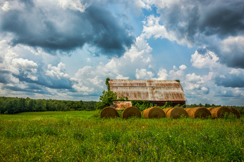 Wisconsin barn on a summer day