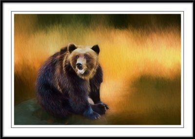 Skansen bear....