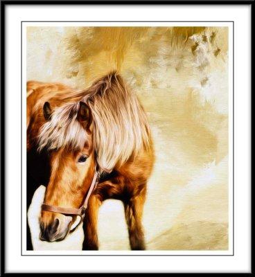 Beautiful horse...