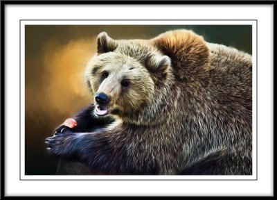 Bear close up...