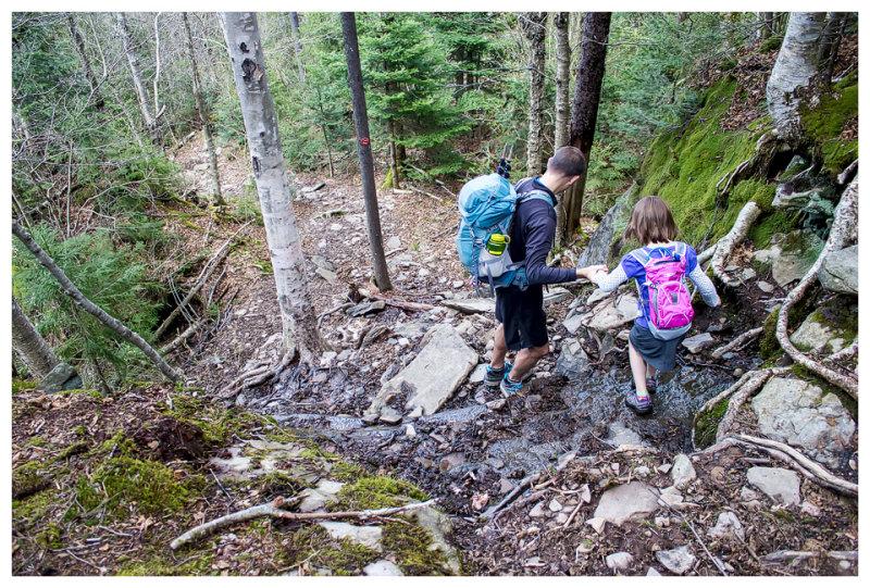 Typical Catskills trail