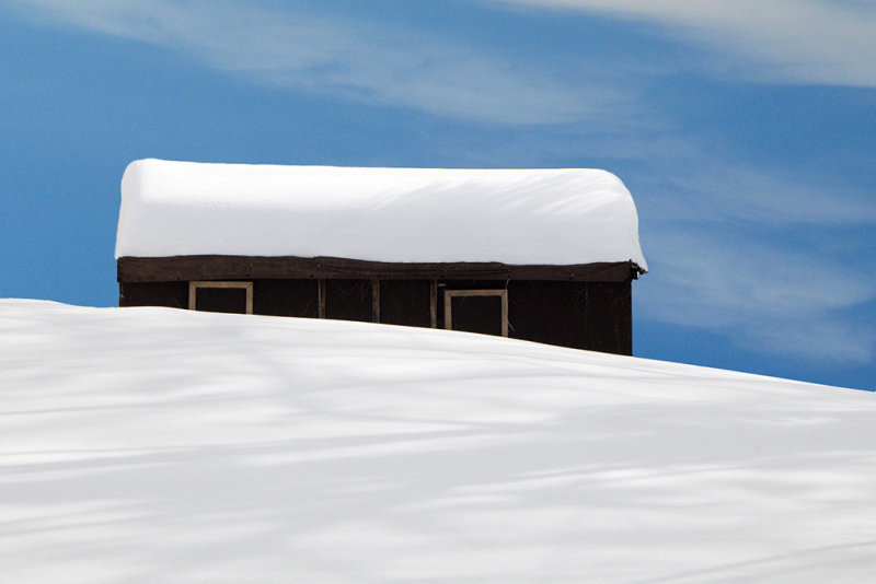 Snow Shed .jpg