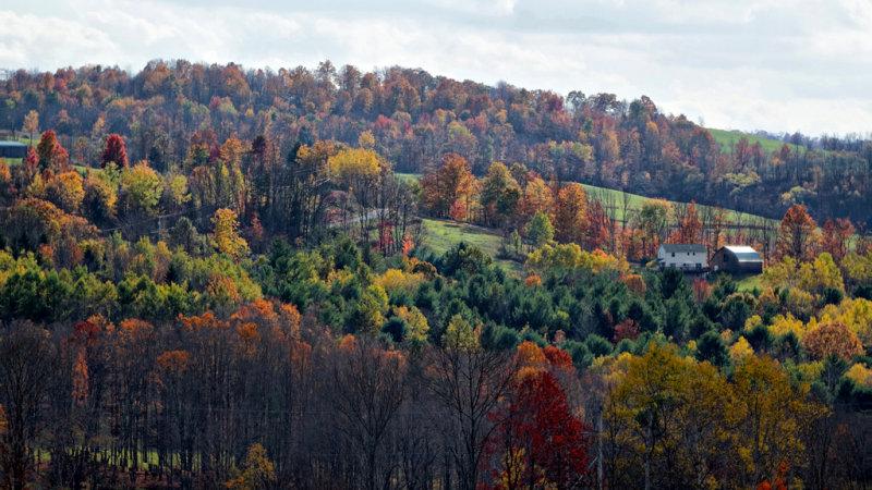 Fall Foliage NEW York RX10