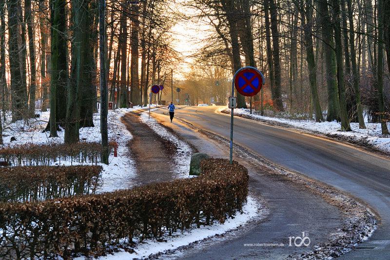 Winter near the city / Vinter tæt på byen