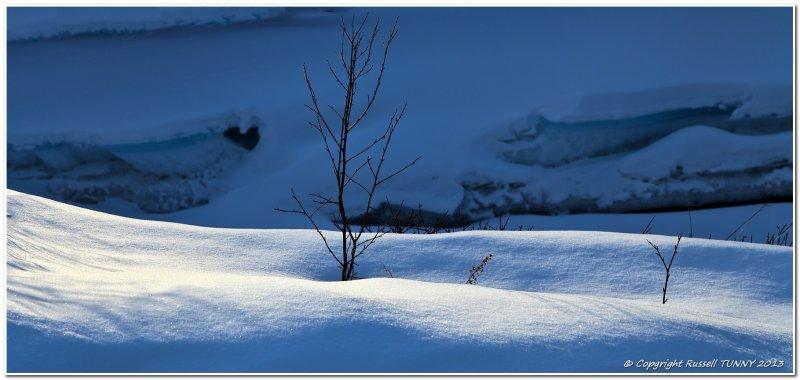 Snow Growth