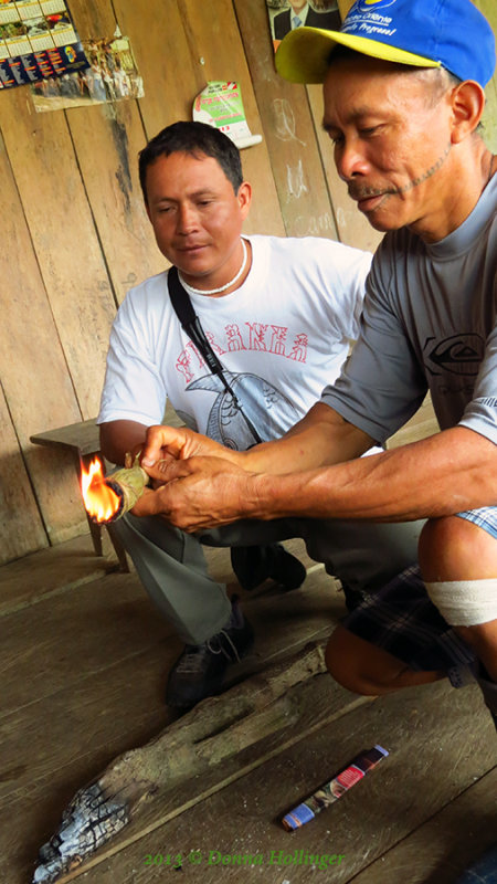 Burning these fibers produces an insect repellent